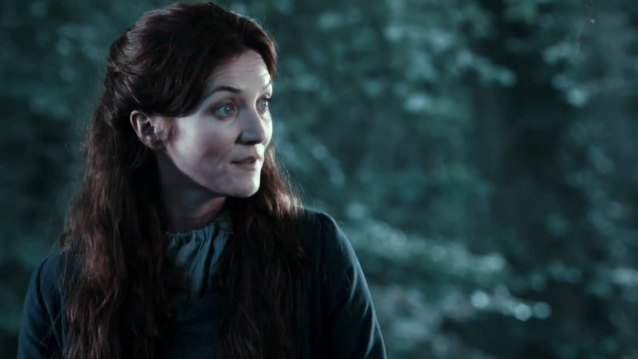 22+ Michelle Fairley Game Of Thrones Pics