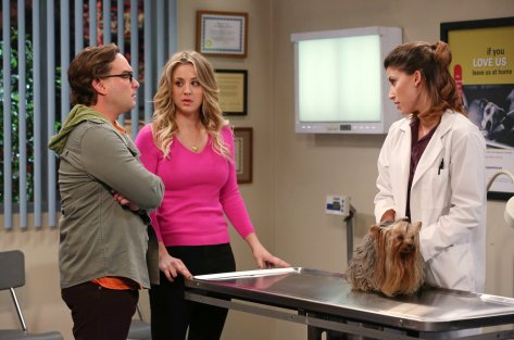 Kaley Cuoco and Johnny Galecki in The Big Bang Theory, season 7 Photo: Warner Brothers